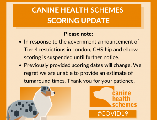 BVA/KC Canine Health Scheme Score suspended due to Covid
