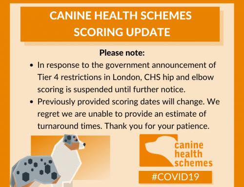 BVA/KC Canine Health Scheme Score suspended due to Covid
