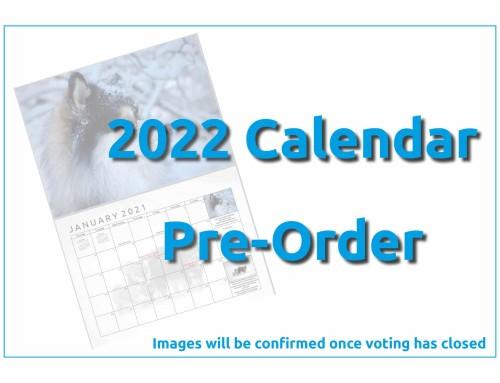 2022 Calendar Voting now open