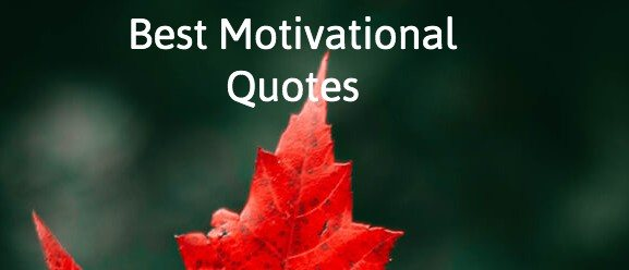 Best Motivational Quotes On Life, Sports, Friends, Business, Sales