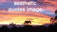 aesthetic quotes image