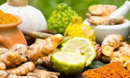 Healthy Ayurvedic Herbs That Keeps You Fit And Fine