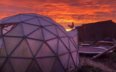 Vintermorgen på Friland