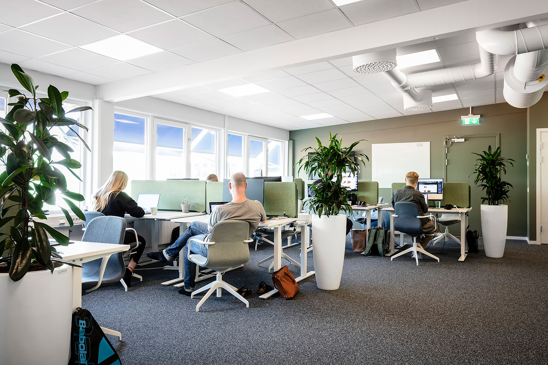 Bordsskärmar från Lintex, Skrivbord och skrivbordsstolar från Ikea.