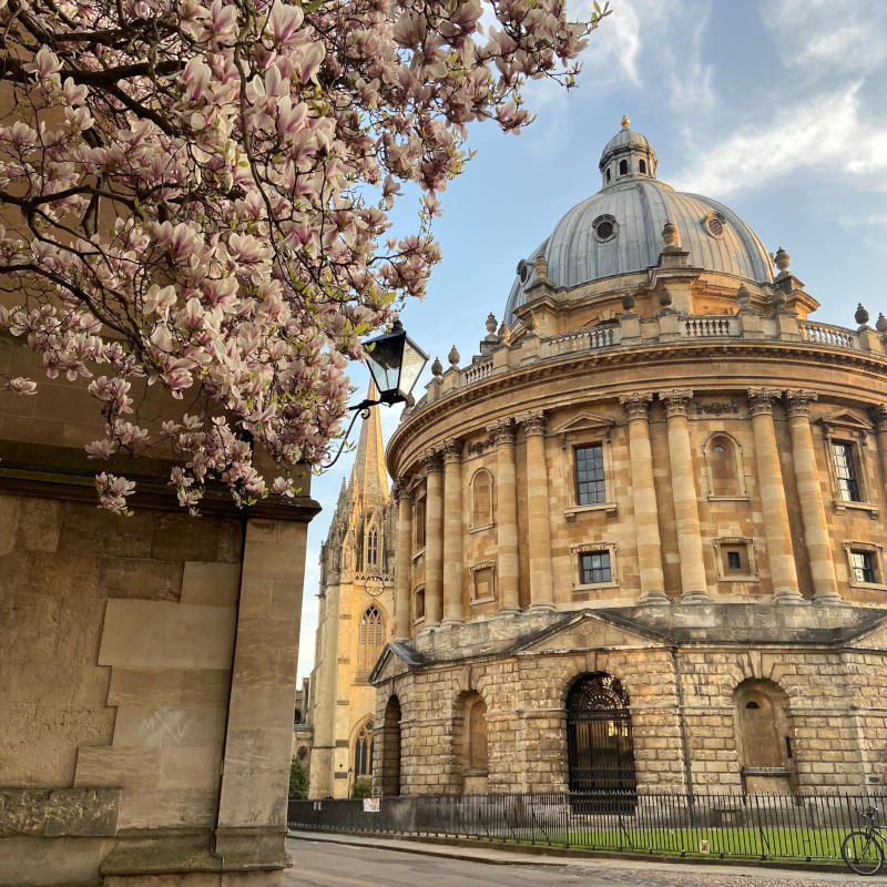 Oxford and Cambridge Tutors Online Summer School University Admissions