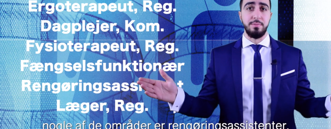 Lønforskelle i Danmark
