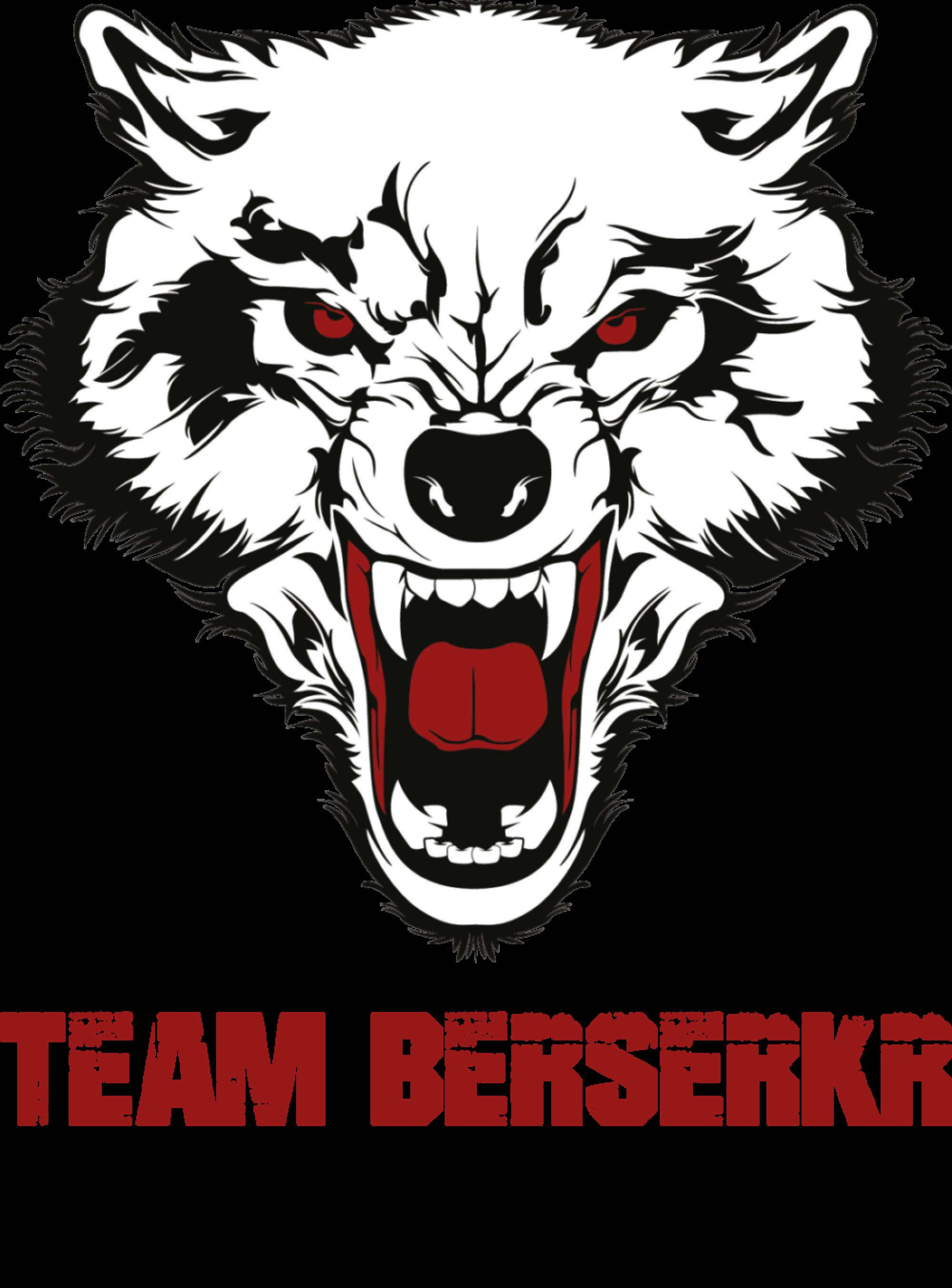 Team-Berserkr