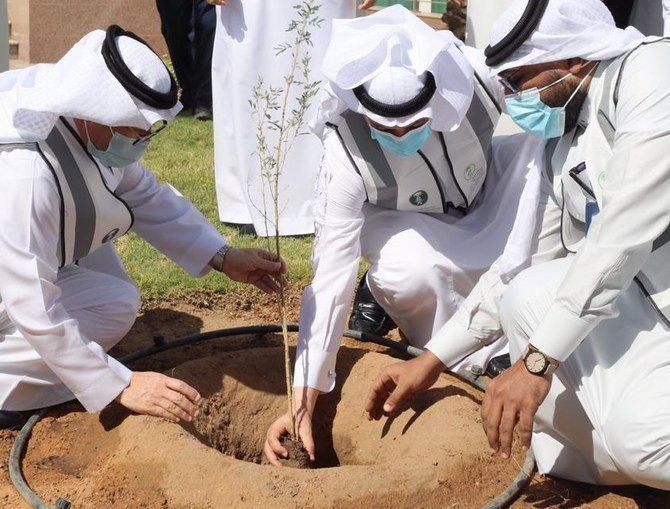 Saudi Arabia launches 'make it green' campaign to plant 10 million trees