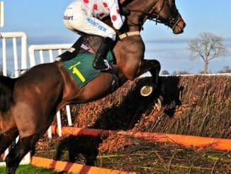 Top Rated Jumps Review