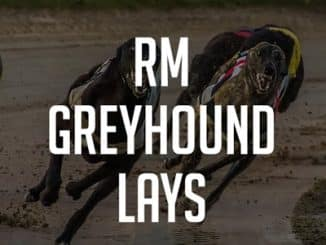 RM Greyhound Lays Review