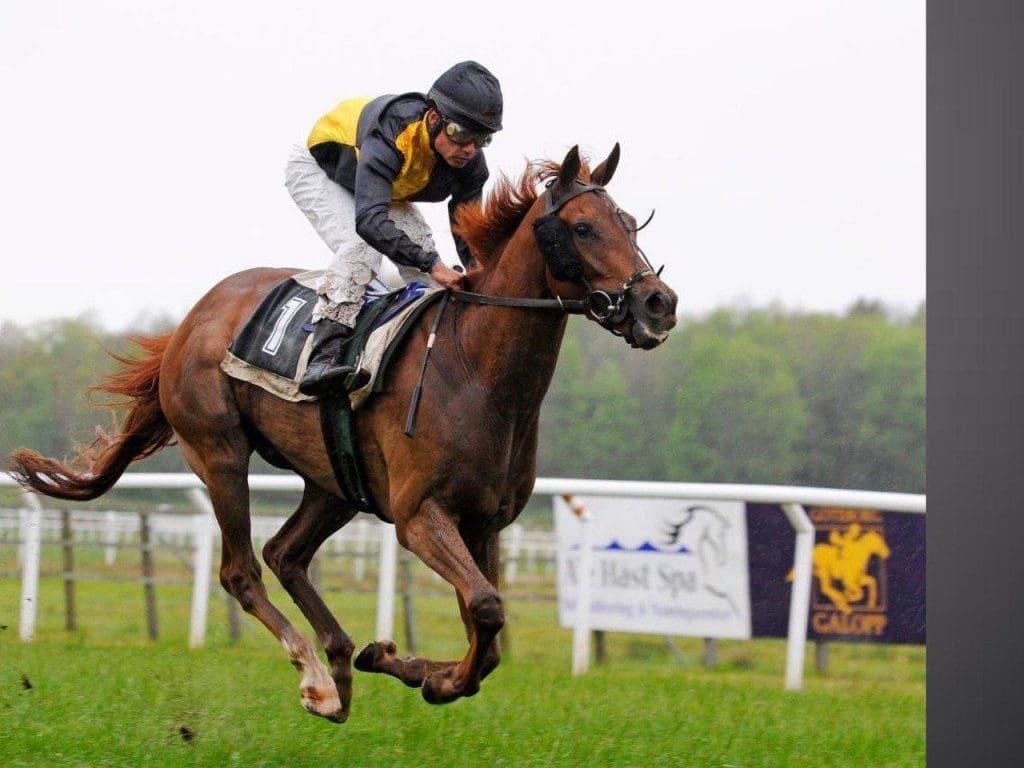 Horse Racing's biggest events