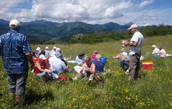 En gruppe spiser frokost i det grønne, bjerge i baggrunden