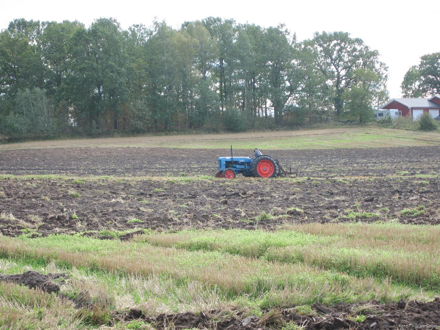 2007-09-15_12_valsta