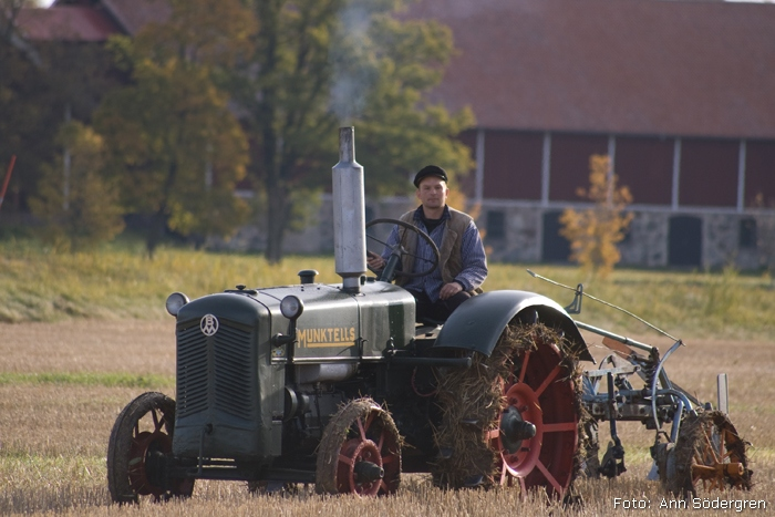 2009-10-10_015_DM_plojning