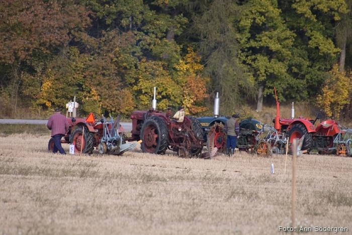 2009-10-10_018_DM_plojning
