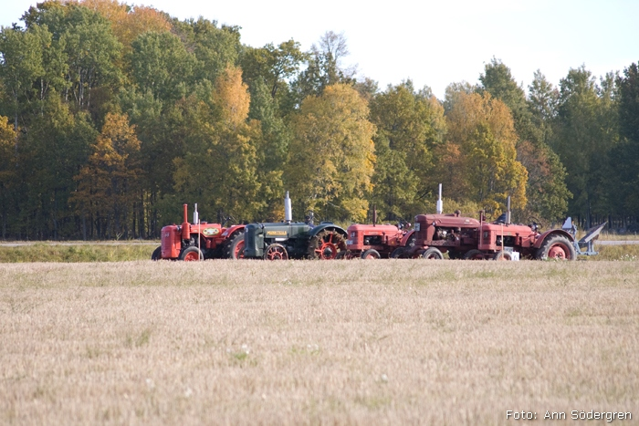 2009-10-10_033_DM_plojning