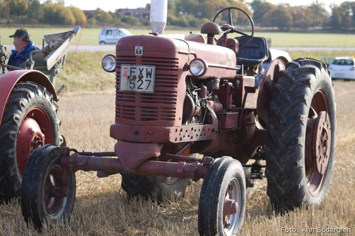 2009-10-10_040_DM_plojning