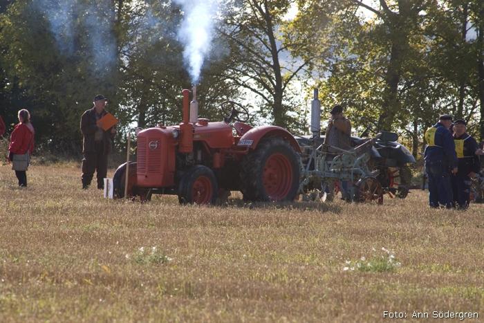 2009-10-10_060_DM_plojning