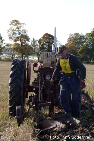 2009-10-10_114_DM_plojning