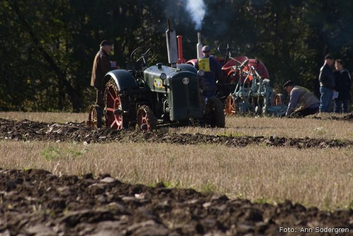 2009-10-10_149_DM_plojning