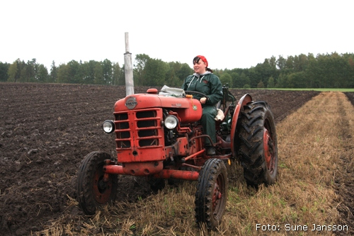 2010-09-18_060_Valsta