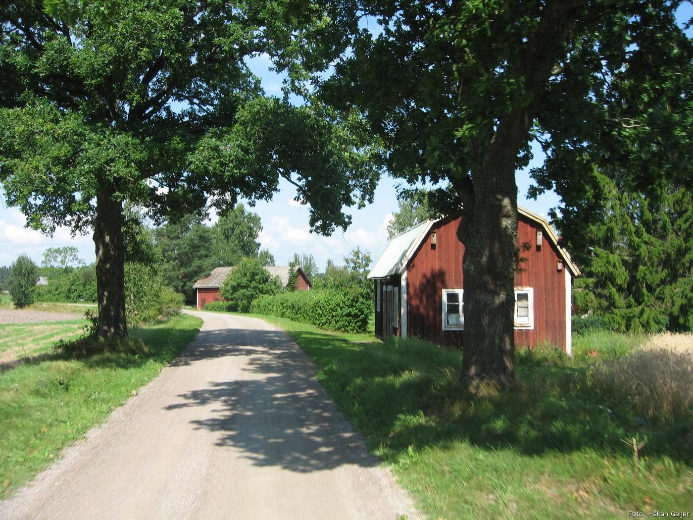 2011-07-31_09_Traktorresa