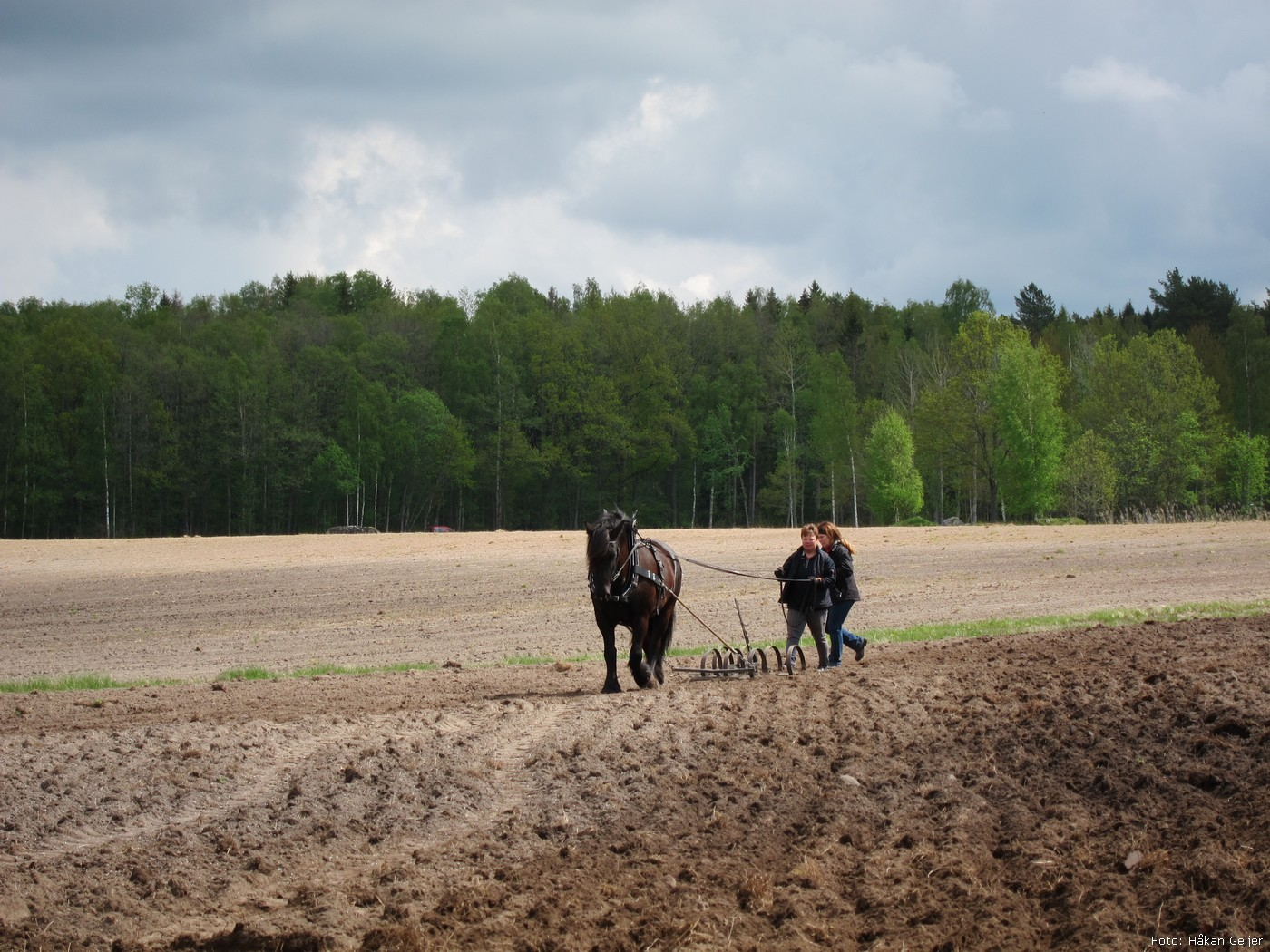 2012-05-17_13_Varsadd