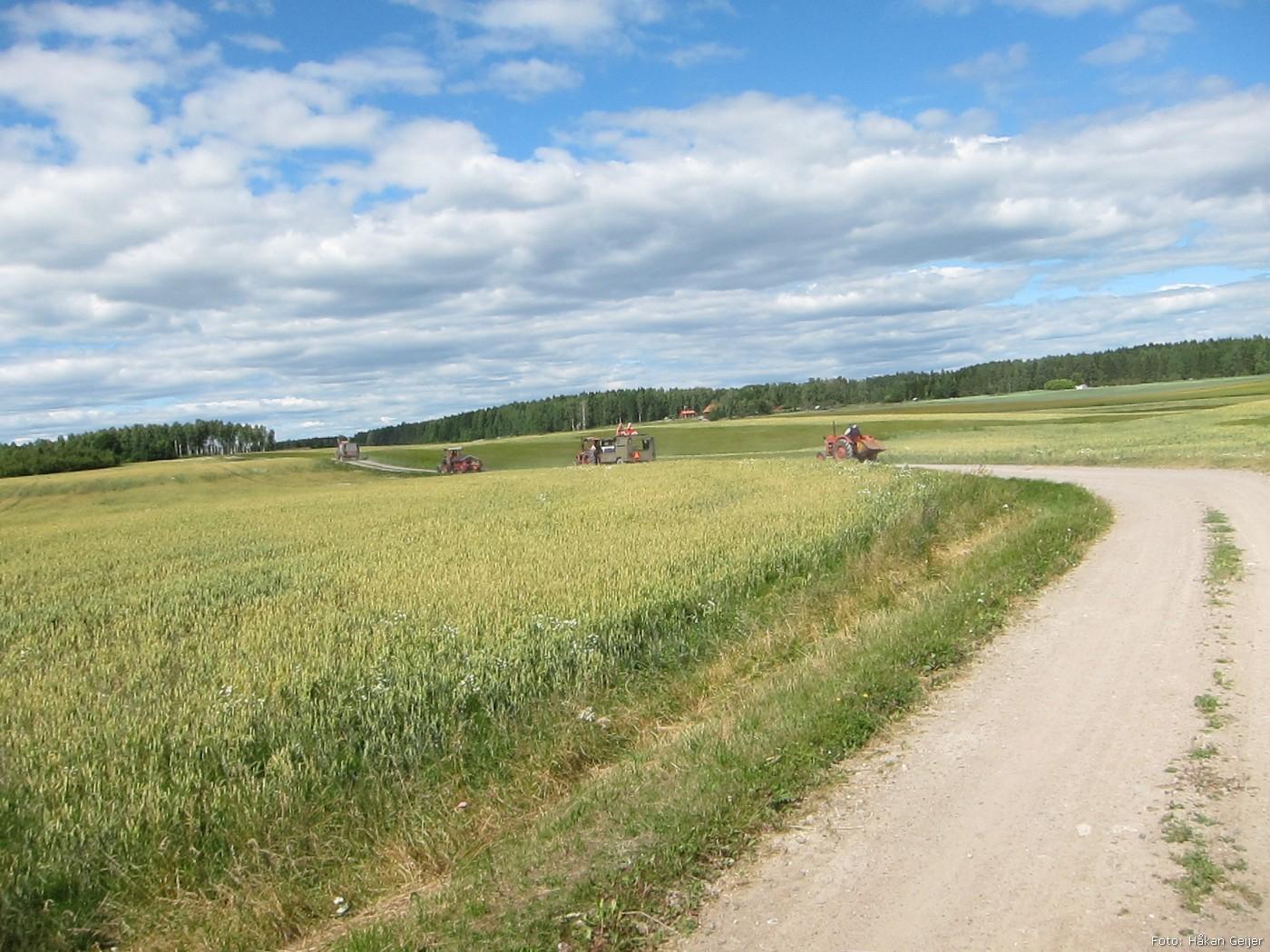2013-07-19_49_Traktorresa