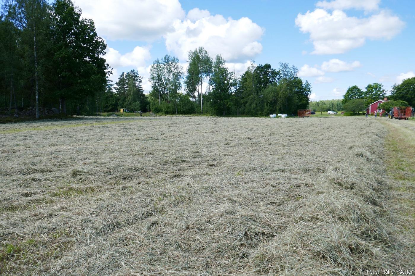 2016-07-09_07_slatterdag