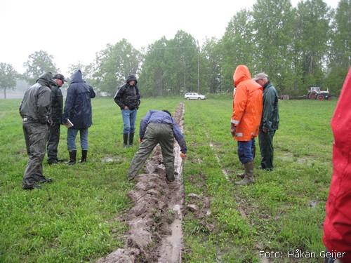 2010-05-29_11_Plojarskola_drag1