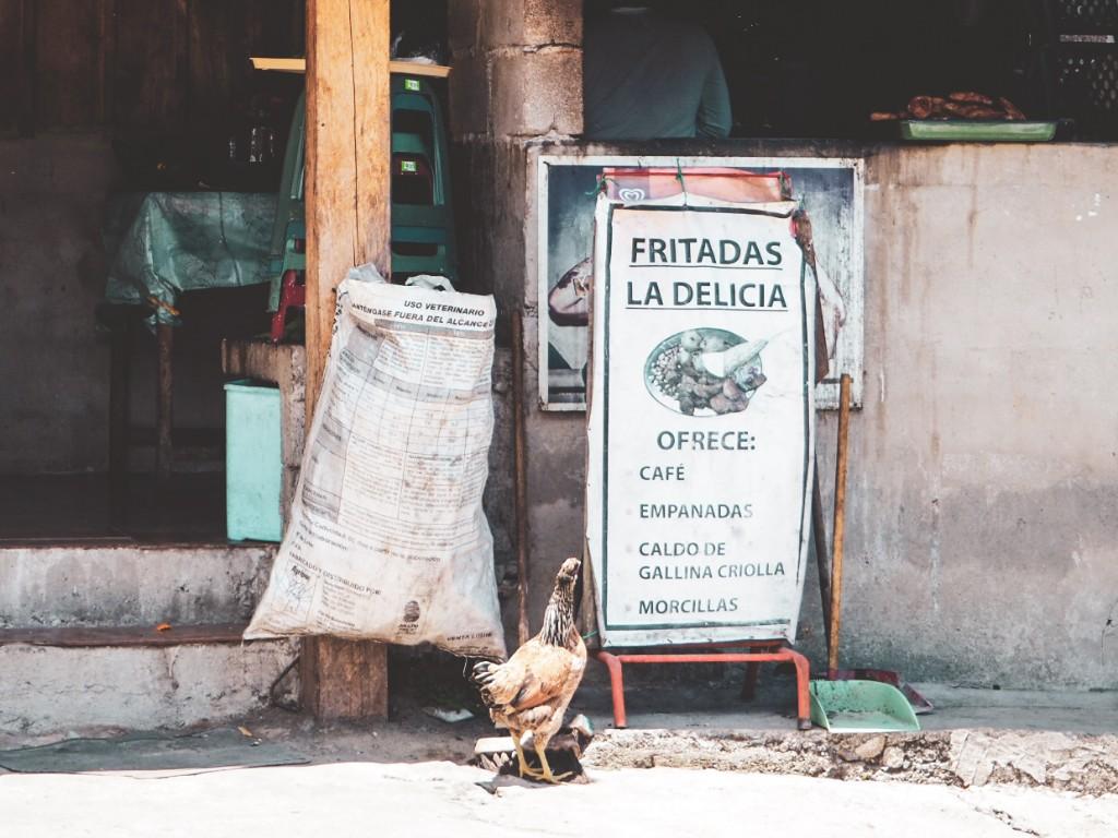 Intag Valley - Über Hunde, Ruhe und Langsamkeit 3