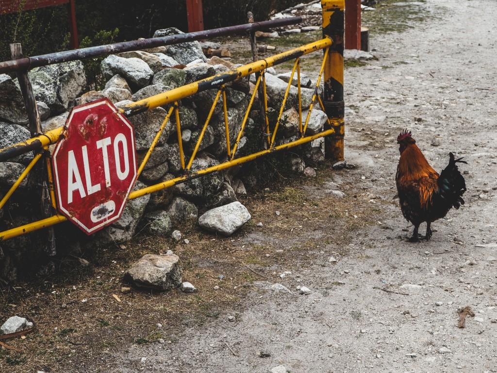 In die Berg bin i gern - Huaraz, Peru 12