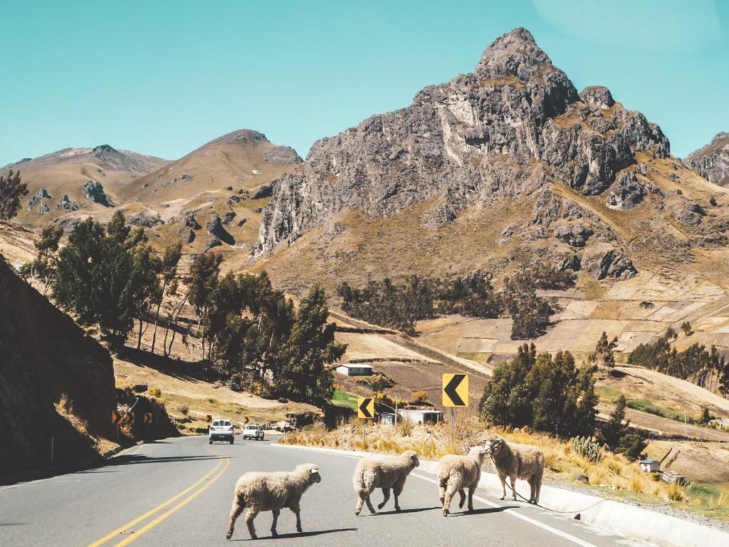 Quilotoa - Gratwanderungen in Ecuador 5