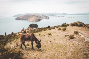 In die Berg bin i gern - Huaraz, Peru 14