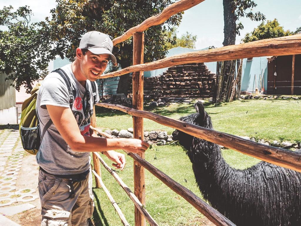 Arequipa - in der entspannten Stadt im Süden Perus 7