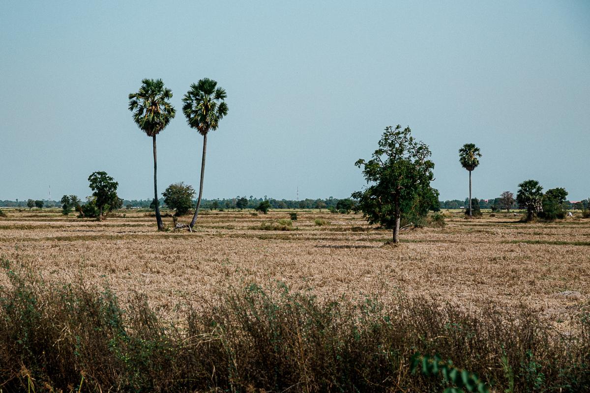 Battambang - Kambodschas Landleben 23