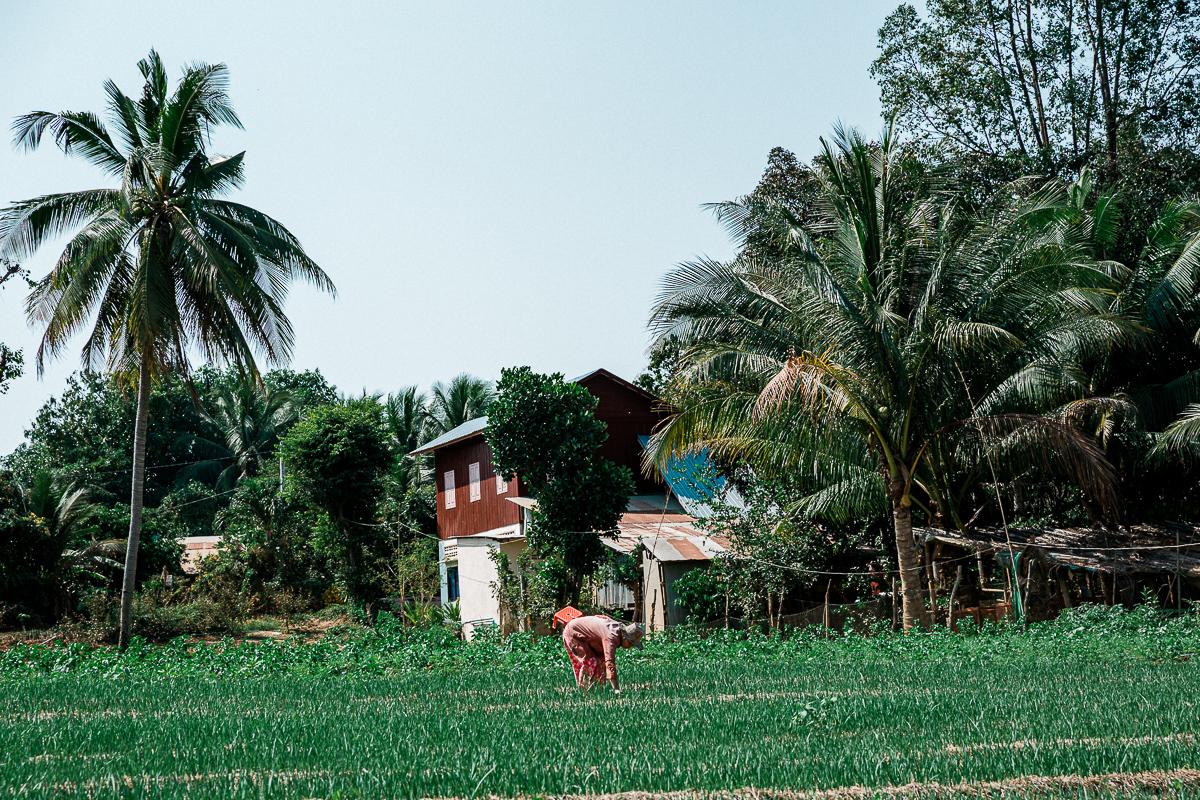 Battambang - Kambodschas Landleben 32