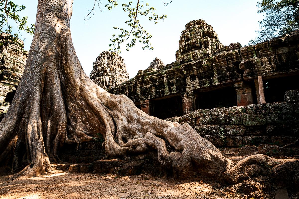 Angkor Wat und die lachenden Gesichter Kambodschas 22