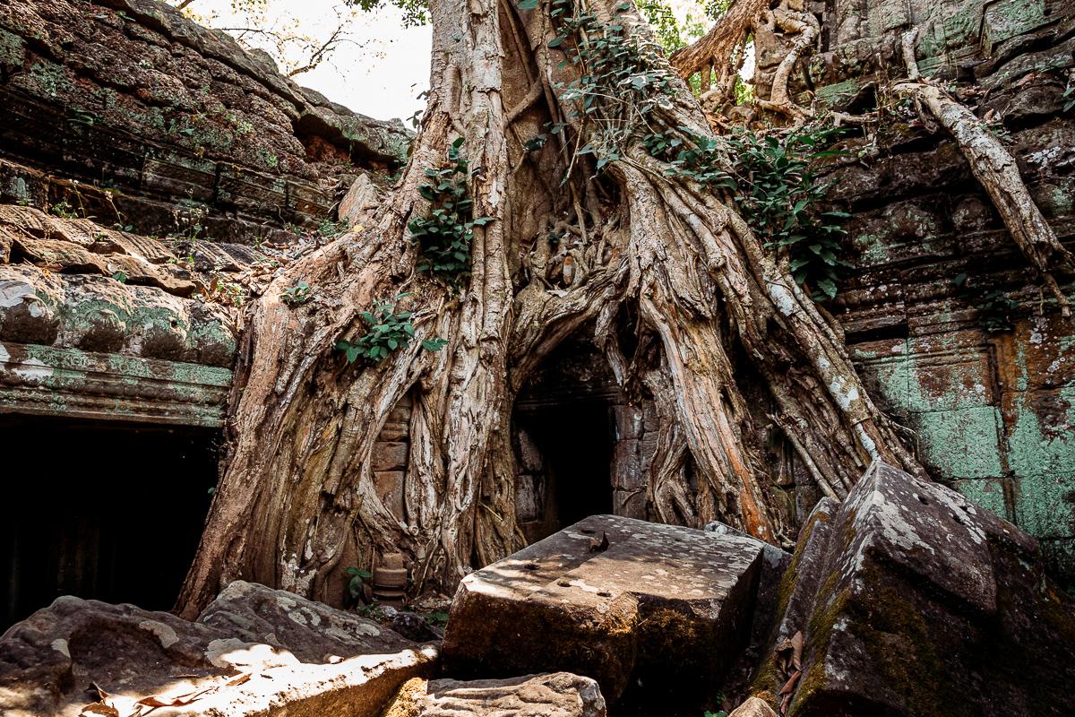 Angkor Wat und die lachenden Gesichter Kambodschas 18
