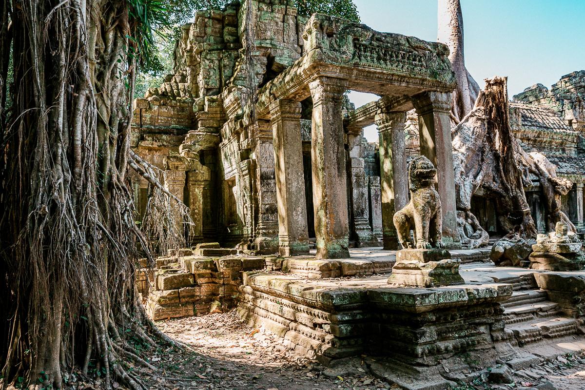 Angkor Wat und die lachenden Gesichter Kambodschas 39