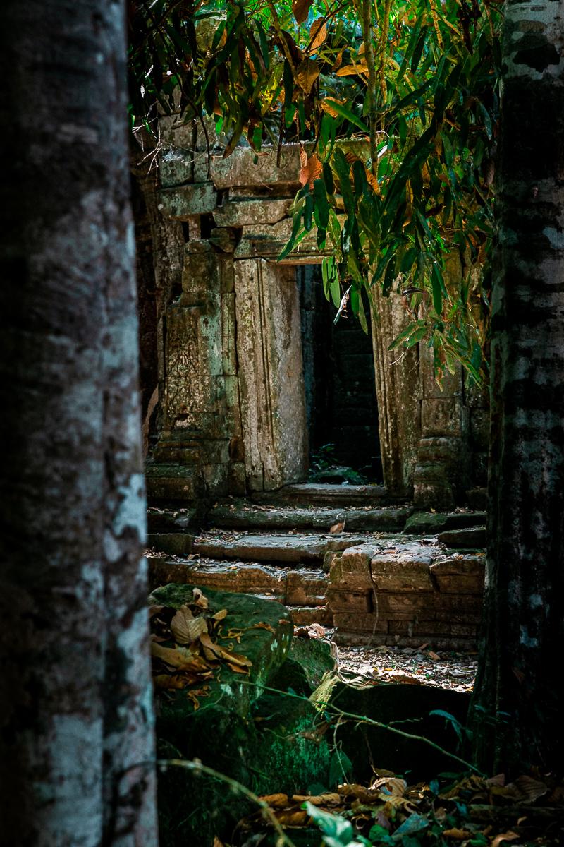 Angkor Wat und die lachenden Gesichter Kambodschas 38