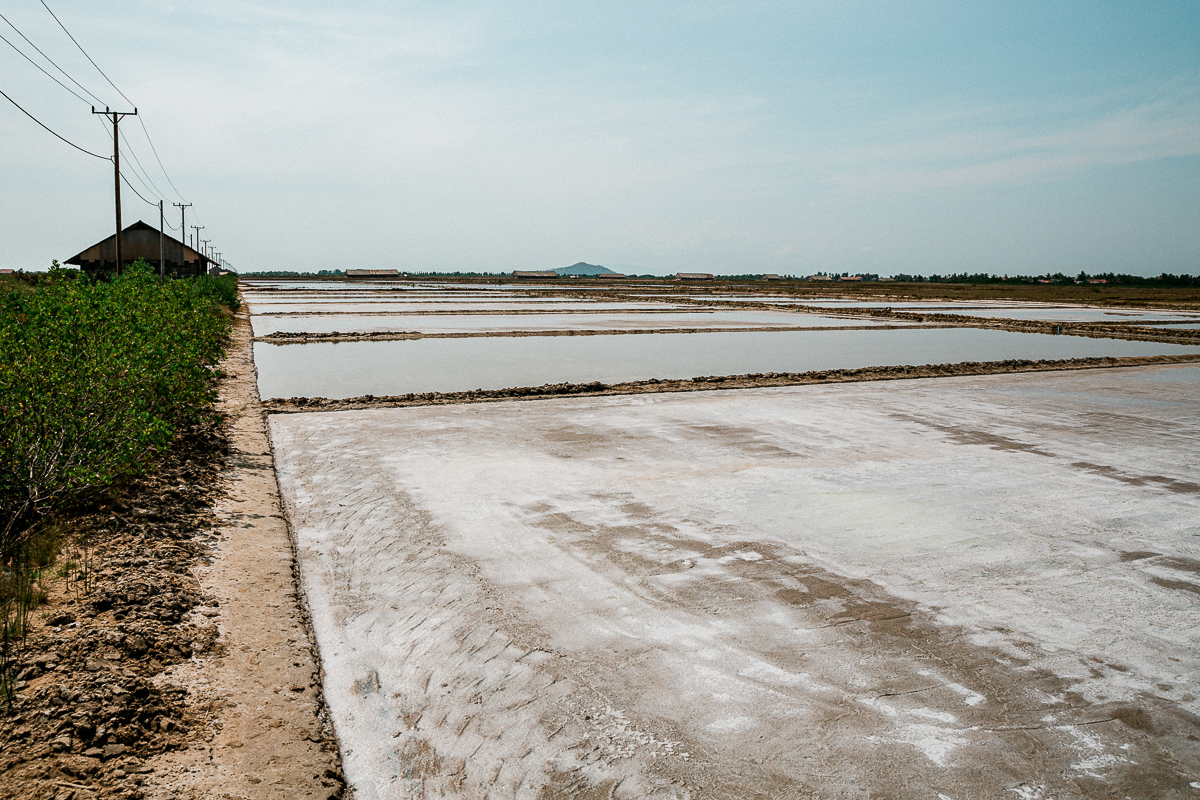 Kampot - Dorthin gehen wo der Pfeffer wächst 14
