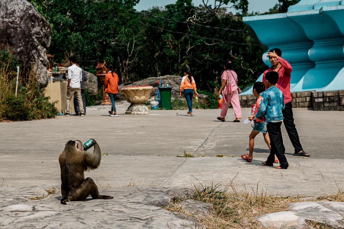 Kampot - Dorthin gehen wo der Pfeffer wächst 34