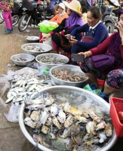 Kampot - Dorthin gehen wo der Pfeffer wächst 2