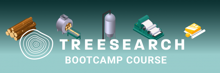 bootcamp course bild treesaerch-02