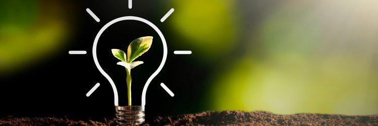 managing innovation prrocess