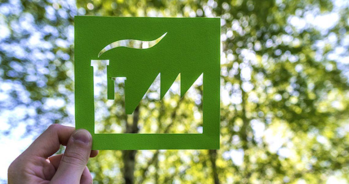 Eco friendly green living