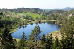 Fiddan-Øko-Gård (15)