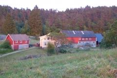 Fiddan-Øko-Gård (16)
