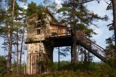 Wilderness-Tower-TreeTop-Fiddan-29